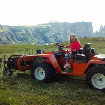 Farm holidays with children on farm zu Falentör in the Dolomites